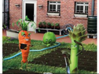 Mijn gifvrije tuin